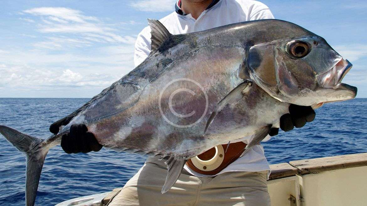 Fishing: tackle and equipment required for your trip